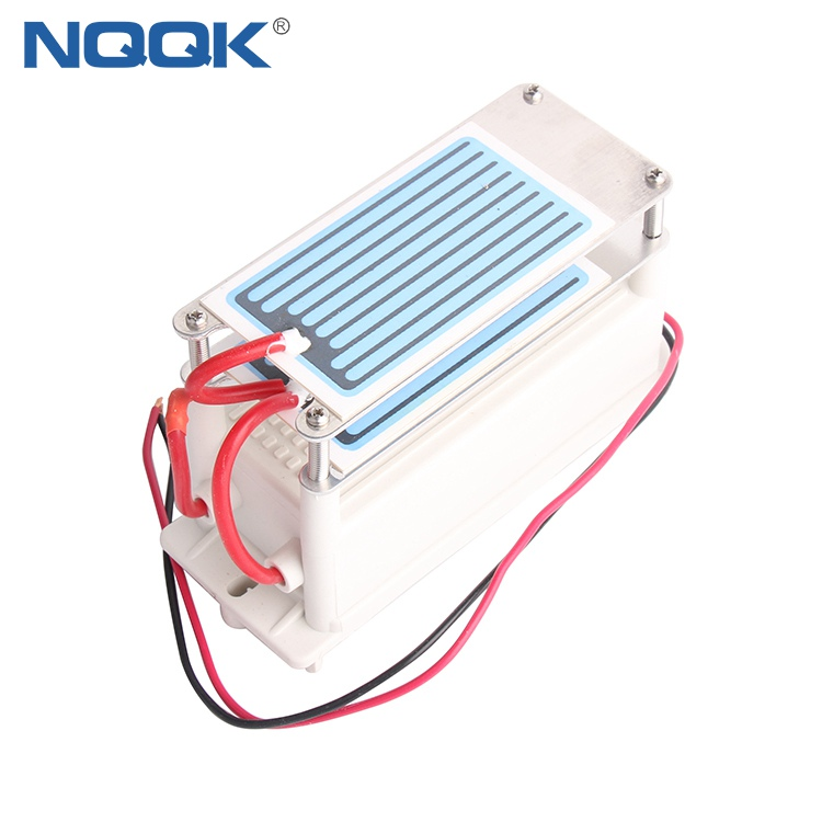 10g 10g/h 110V 200V AC 2 piece Ceramic One Chip Plate small ozone generator
